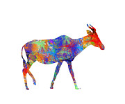 Trilby Cole - Antelope in Color
