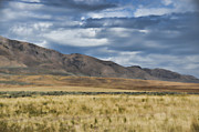 Antelope Photos - Antelope Island Camera Flats by Donna Van Vlack