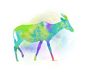 Trilby Cole - Antelope