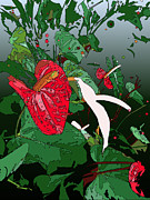 Stacy Vosberg - Anthuriums