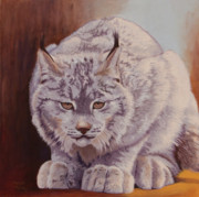 Lynx Painting Posters - Anticipation before the pounce Poster by Margaret Sarah Pardy