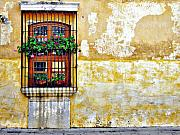 Yellow Ochre Framed Prints - Antigua Window Framed Print by Derek Selander
