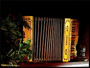 Ellen Cannon - Antique Accordion