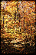 Changing Of The Seasons Prints - Antique Fall Print by Mariola Bitner