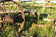 Pam Moore - Antique Farm Equipment.