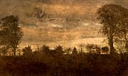 Liz  Alderdice - Antique Golden Landscape