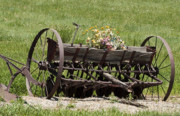 Floral Jewelry Metal Prints - Antique Horse Drawn Seeder Metal Print by Daniel Hebard