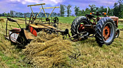 Greyhound Photos - Antique Wheat Binder and Tractor by F Leblanc