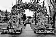 Jackson Hole Photo Framed Prints - Antler Arch Framed Print by Benjamin Yeager