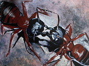 Ants Paintings - Ants by Gitta Brewster