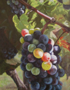 Autumn Vineyards Paintings - Any Day Now by Karen Ilari