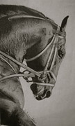 Thoroughbred Drawings - Any Given Saturday by Whitney Valls