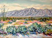 Verbena Paintings - Anza Borrego Desert by Robert Gerdes