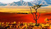 Anza Borrego Desert Southern California Print by Nadine and Bob Johnston
