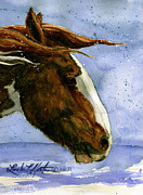 Pinto Painting Originals - Apache Bachelor Stallion of Sand Wash Basin by Linda L Martin