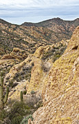 Cliff Lee Metal Prints - Apache Trail Springtime Metal Print by Lee Craig