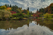 Japanese Garden Posters - apanese Garden Reflective Skies Pool Poster by Mike Reid