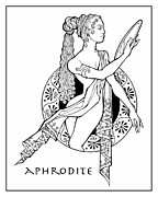 Goddess Mythology Drawings - Aphrodite by Steven Stines