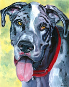 Great Dane Art Framed Prints - Apollo of Dogs - Great Dane Framed Print by Lyn Cook