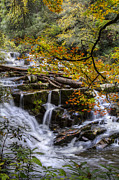 Tn River Prints - Appalachian Mountain Waterfall Print by Debra and Dave Vanderlaan