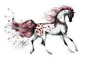 Stacey Mayer - Appaloosa Horse Rose...