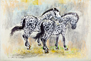 Pair Pastels Framed Prints - Appaloosa horses Framed Print by Kurt Tessmann