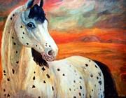 Relly Peckett - Appaloosa