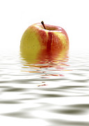 Apple Digital Art Posters - Apple Afloat Poster by Natalie Kinnear