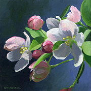 Apple-blossom Paintings - Apple Blossom by Alecia Underhill