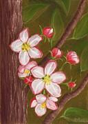 Anastasiya Malakhova - Apple Blossom