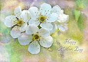 Photomanipulation Photo Prints - Apple Blossom Mothers Day Card Print by Debbie Portwood