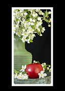 Apple Framed Prints - Apple Blossoms Card Framed Print by Edward Fielding