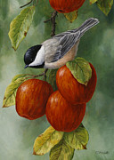 Apple Chickadee Greeting Card 3 Print by Crista Forest
