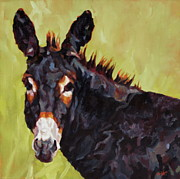 Burro Metal Prints - Apple Jack Metal Print by Patricia A Griffin