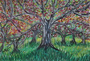 Apple Pastels Prints - Apple Orchard Print by Sally Rice