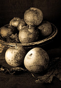 Fruit Photo Metal Prints - Apple Still Life Black and White Metal Print by Edward Fielding