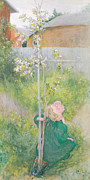 Green Movement Framed Prints - Appleblossom Framed Print by Carl Larsson