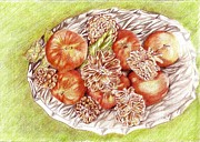Pine Cones Drawings - Apples and Pine cones by Candace  Hardy