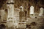 Cemetery Posters - Apples Church Cemetery Poster by Joan Carroll