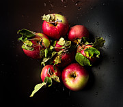 Red Delicious Prints - Apples Print by Ivan Vukelic