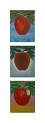 Fruit Tree Art Giclee Framed Prints - Apples Triptych 2 Framed Print by Don Young
