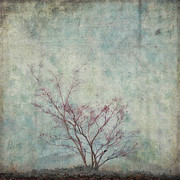 Weathered Digital Art Prints - Approaching Spring Print by Carol Leigh