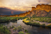 Peter James Nature Photography Posters - Approaching the Salt Poster by Peter Coskun