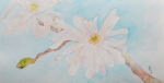 Pink Flower Branch Paintings - April 1st by Beverley Harper Tinsley