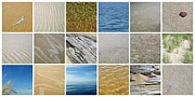 Photo Collage Digital Art Prints - April Beach 2.0 Print by Michelle Calkins