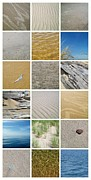 Beach Glass Posters - April Beach Poster by Michelle Calkins