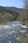 West Fork Photos - April on Dry Fork by Randy Bodkins