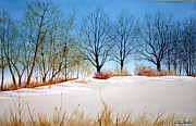 Featured Originals - April Treeline by Jim Gerkin