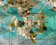 Cherry Blossoms Digital Art Metal Prints - Aqua Blossom Metal Print by Marcie Adams Eastmans Studio Photography