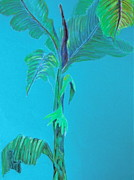Mindy Newman Drawings - Aqua Palm by Mindy Newman